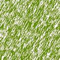 Bent grass.jpg