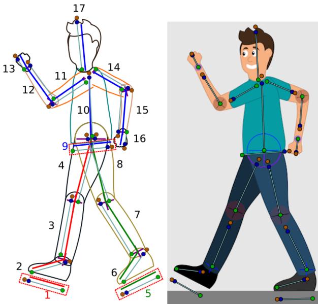 File:Skeleton-to-walk.png