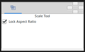 Scale Tool Options.png